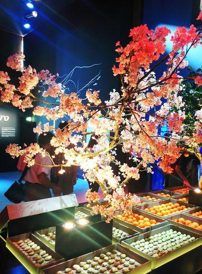 Japan expo2015