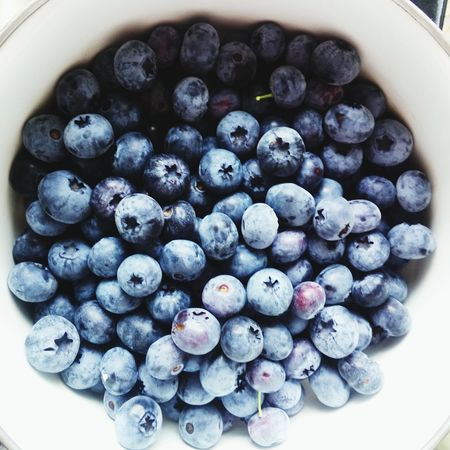 Healthy Eating Food Freshness Food And Drink Bowl Black Color No People Indoors  Day голубика Blueberries Brest беларусь Брест Belarus
