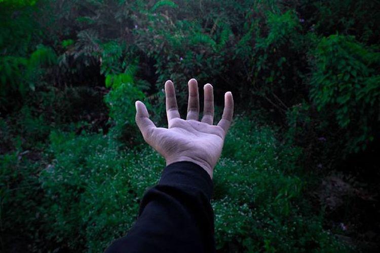 """Maybe I'm a A.D.D. Baby!."" @rsa_dark @rsa_portraits @rsa_mystery Rsa_dark Rsa_streetview Rsa_bnw Like4like Photography Me Dark Green Sail Lyric  Quote Hand Finger Nature Street Streetshared Instalike Landscape Outdoor Whpmyoasis Alone Follow"