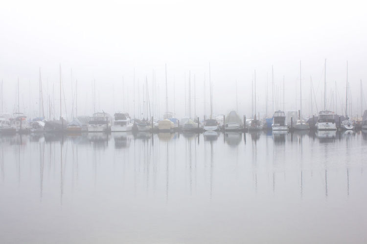 Fog Water Mode Of Transportation Transportation No People Reflection Nautical Vessel Tranquility Moored Day Sailboat Outdoors In A Row Harbour Harbor
