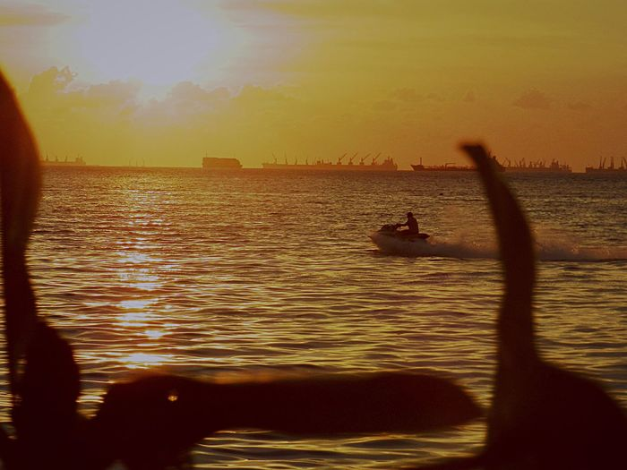 EyeEm Lifestyles Pictures Tell A Story Eyeemphotography Sunset Silhouettes EyeEm Best Shots EyeEm Gallery Beauty In Nature Sunset Silhouette EyeEmNewHere Reflection Sea Real People Outdoors Scenics One Person Nature Beauty In Nature Sky Men Sailing Day TCPM People