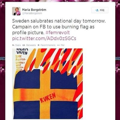 It is incomprehensible, that so many Swedes want ignorant people like Maria Borgström to govern Sweden. Svpol Feminism Feminazism