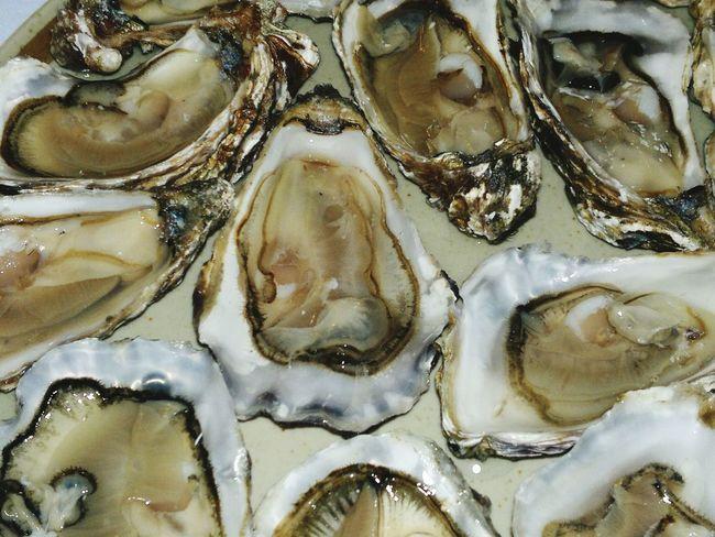 Austern Muscheln SEAFOOD🐡 Seafoods