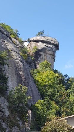 Chimney Rock Low Angle View Clear Sky Tree Blue Green Color Mountain Scenics Non-urban Scene Beauty In Nature Tranquility Rock Formation Outdoors Day Cliff Chimney Rock North Carolina Daytrip Tranquility Cool National Park