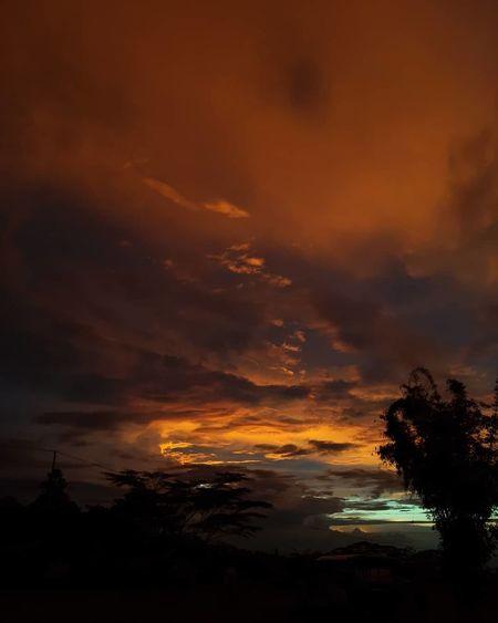 Orange Sky The
