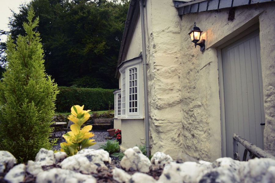 EeyemBestPhotography Eeyemphotos Holiday Wales❤ Wales UK Wall - Building Feature Wales Betws Y Coed Eeyem Photography Eeyemgallery Eeyem EeYem Best Shots Built Structure Building Exterior Architecture Outdoors Day Cottage