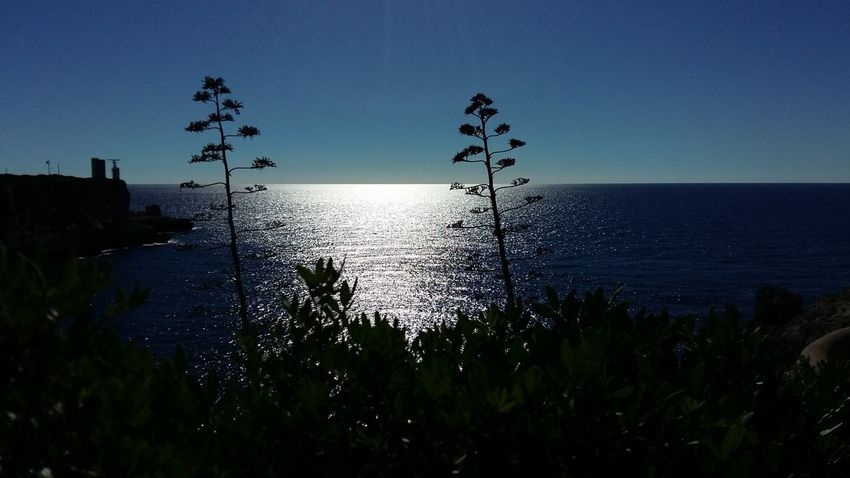 Beauty In Nature Blue Horizon Over Water Mallorca Reflection Sea Seascape Solitude SPAIN Talking To The Sea Tranquil Scene Tranquility Water Live For The Story