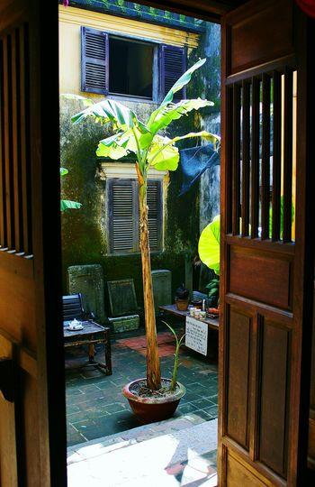 Vietnam Hidden Courtyards