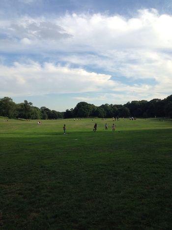 Prospect Park Landscape Park Life New York City Lawn ProspectPark Sunny Day Brooklyn
