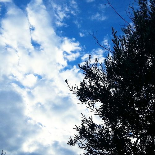 Goodafternoon Sky Sun Clouds Good Times Happiness Spring Nature Nature_collection Moment