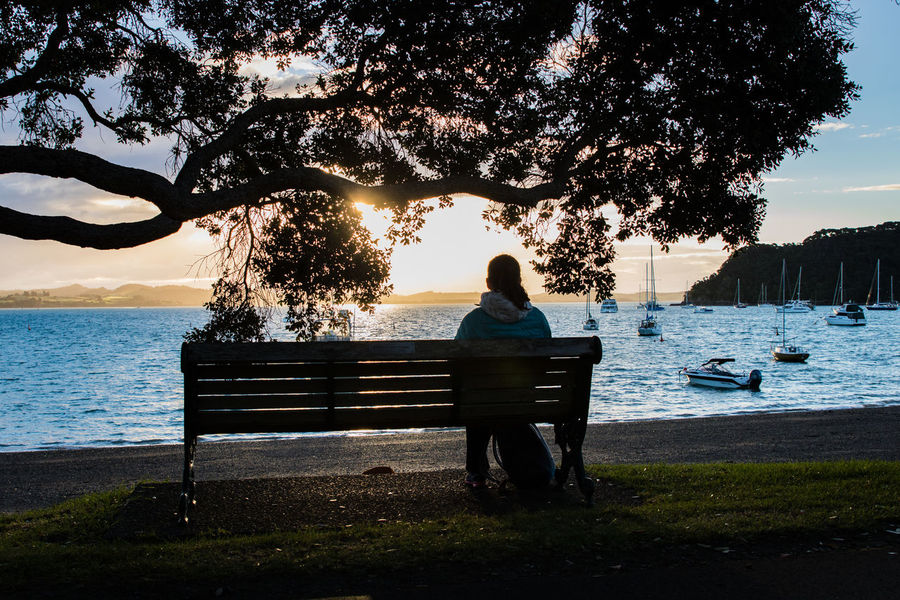 woman sitting on a bench with a nice view to the bay of islands at russel Bay Of Islands Travel Beauty In Nature Bench Lake Leisure Activity Lifestyles Nature New Zealand One Person Outdoors Pacific Ocean Park Bench Plant Real People Rear View Relaxation Seat Sitting Sky Sunset Tree Water Women The Traveler - 2018 EyeEm Awards
