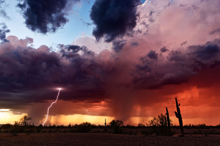 Lightning from a sunset thunderstorm in the Arizona desert. Lightning Lightning Storm Lightning Bolt Thunderstorm Storm Stormy Sky Storm Cloud Cumulonimbus Cloud Cloud - Sky Sky Sunset Beauty In Nature Dramatic Sky Power In Nature Silhouette Landscape Scenics - Nature Nature Weather Monsoon Climate Change Meteorology Arizona Arizona Desert Saguaro Cactus