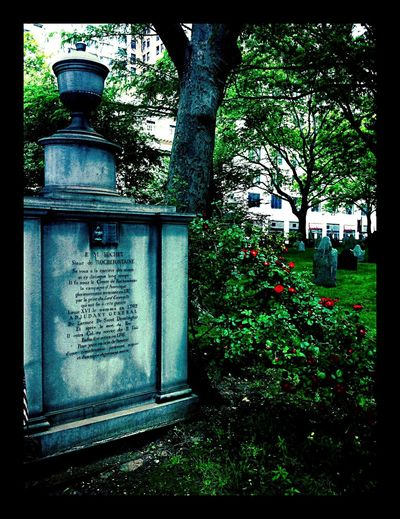 Color Photography Historical Building Church Graveyard Architecture EyeEm Best Shots Sculptures Flower Garden Life Adapted To The City