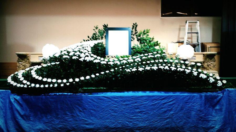 最近忙しくて全然カメラを触れてません(´-`) 花を撮りに行けないのなら、職場で撮ればいいじゃない!? まずは菊とマムでベースを挿してスマホでパチリ。My Work Funeral Green Flowers Chrysanthemum Spraymom EyeEm Gallery