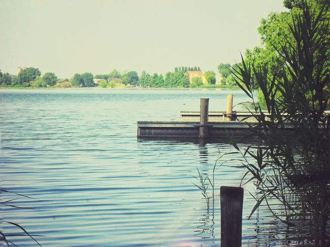 Lake Reflections Water Surface Mantova Plants Waves Scorciditalia Sunny Day Landscape Park