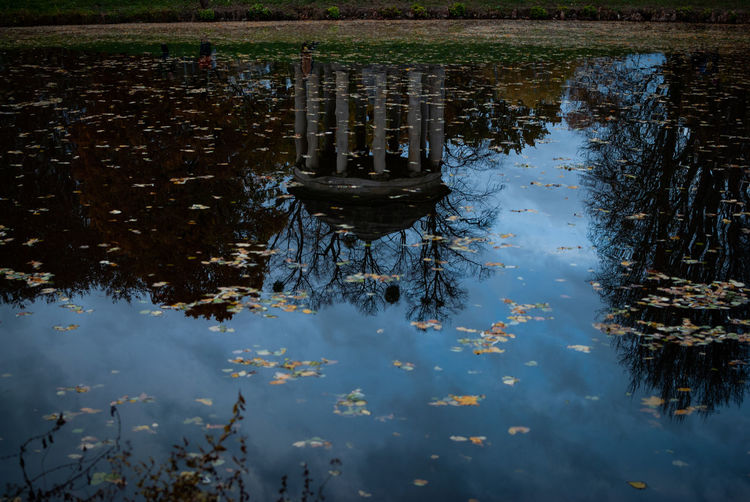 Reflection of a