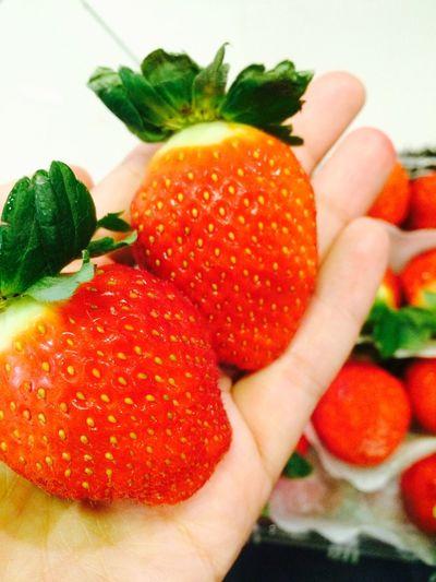 ต้องอร่อยชิป่ะ! Strawberry Korean Strawberry
