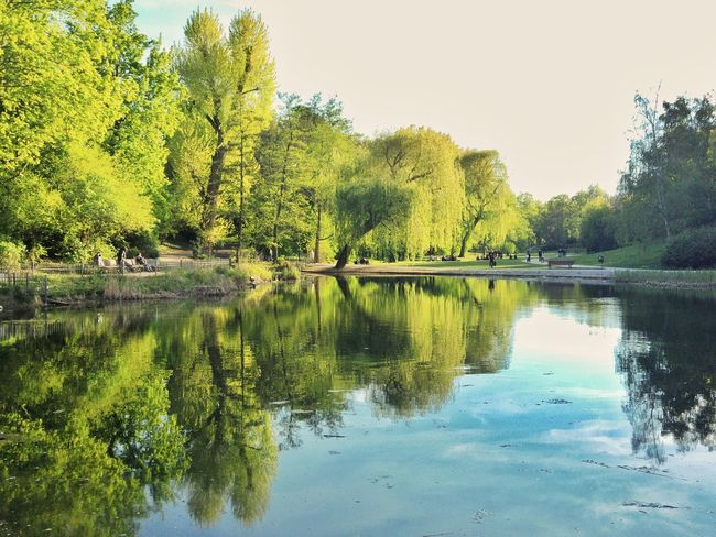Reflection Lake Water Tree Nature Beauty In Nature Outdoors Sky Scenics Day No People Reflection_collection Berlin Schöneberg Pond Water Reflections Springtime Spring Discover Berlin