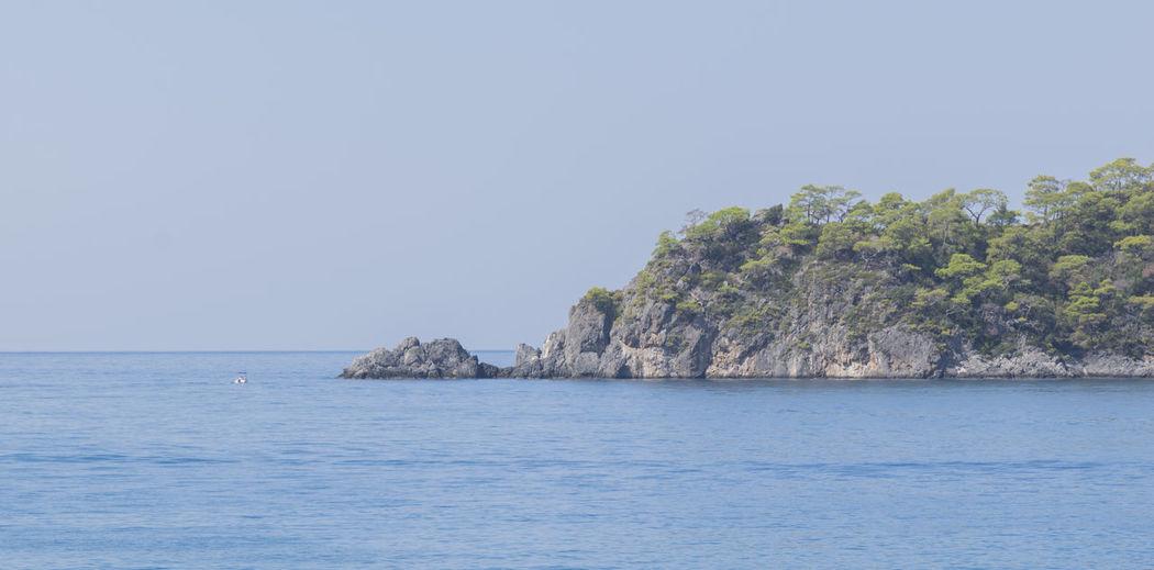 Small Boat Island Tree Clear Sky Sea Water Palm Tree Beach Blue Summer Tropical Climate Sky Reef Tropical Tree