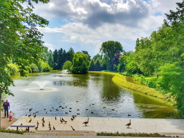 Stadtsee in NRW... 😉 Werne A.d. Lippe Tree Water Large Group Of Animals Animals In The Wild Nature Animal Themes Outdoors Cloud - Sky Beauty In Nature Bird Sky Nature On Your Doorstep The Great Outdoors - 2017 EyeEm Awards Place Of Heart EyeEm Gallery EyeEmNewHere From My Point Of View Nature Photography EyeEm Nature Lover Rural Scene Beauty In Nature Green Color Water Bird The Photojournalist - 2017 EyeEm Awards Lost In The Landscape #urbanana: The Urban Playground