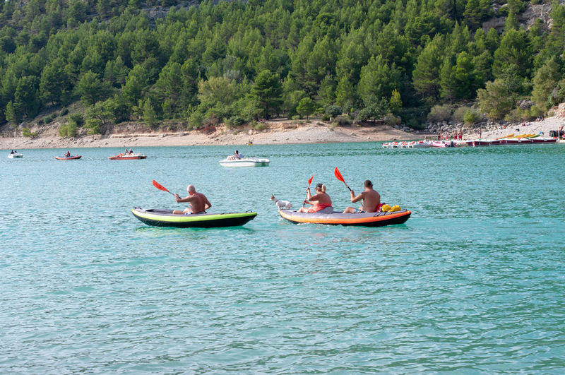 People rowing rowboats in sea against trees