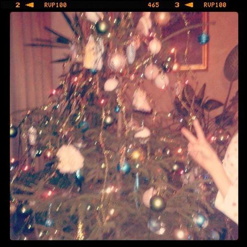 Наша новогодняя елка.