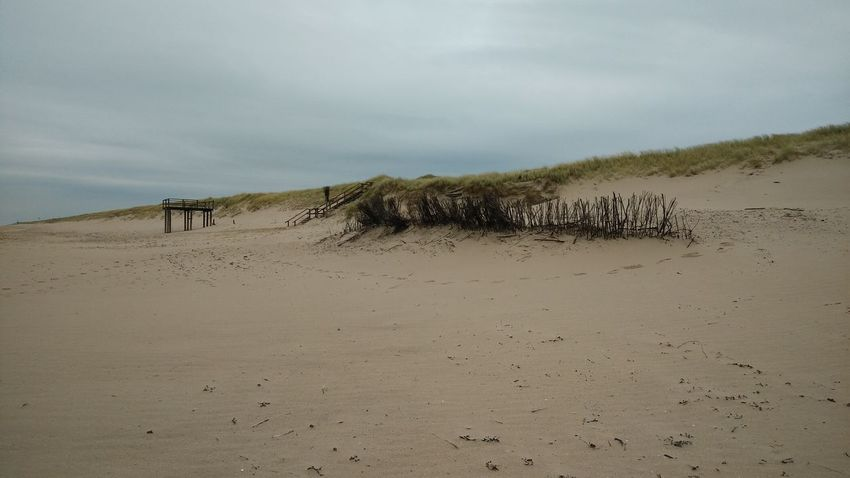 The Beach. · Rantum Sylt Germany Island Nordsee Nordseestrand Nordseeküste Sand Grass Nature Landscape Beauty Beauty In Nature Gray Sky Colors The Purist (no Edit, No Filter)