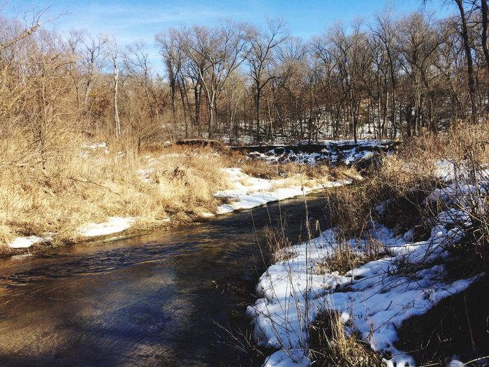 Wood River Stream IPhoneography Outdoors Snow Trees Wildlife & Nature