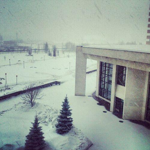 Просто потрясающий снегопад на 1 марта, правда я бы больше порадовалась подснежникам Lookoutwindow Snow Moscow Snowday spring russia cute tbt nature hospital beautiful followme follow like phototime photooftheday picoftheday popular