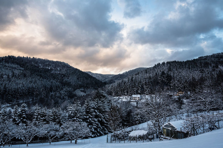 Classic landscape Beauty In Nature Cloud - Sky Cold Temperature Day Landscape Mountain Mountain Range Nature No People Outdoors Scenics Sky Snow Tranquil Scene Tranquility Tree Winter Bühlertal