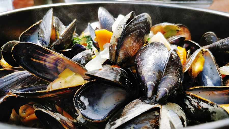 Close-up of fresh mussels on plate