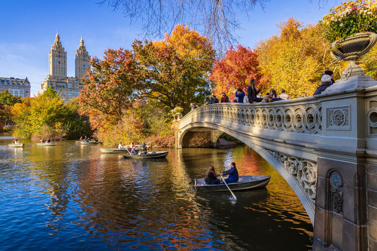 Beautiful day to row a boat surrounded by autumn colors. Water Architecture Tree Autumn Nature Real People City Nature Nature_collection Nature Photography Outdoors Bridge Bow Bridge Central Park Leisure Activity Travel Fall Colors Building Paddle