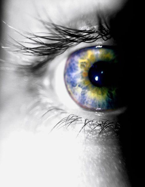 Tunnel vision. Eyeball Eyelash Blue Eyes Close-up Eyesight People Photography Iris - Eye Beauty Vision Eye