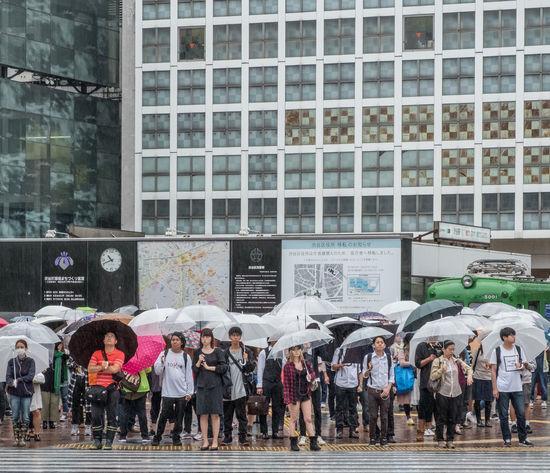 People crossing the famous Shibuya Crossing in Shibuya, Tokyo, Japan City City Life Crossing Crowd Japan Rain Rainy Day Scrambled Shibuya Shibuya Crossing Street Tokyo Umbrella Walking Wet Zebra Crossing
