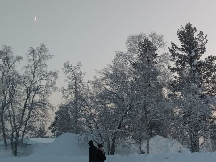 midday moon Saariselkå Finland Daymoon Terrain Winter Subzero Snow White Freezing Temperature Pine Tree Pinaceae Forest Beauty In Nature Landscape Outdoors Frozen Scenics Cold Temperature Nature Tranquil Scene Tranquility Day Sky Tree