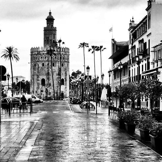 Ciudad Streetphoto_bw Black And White Bw_collection Movilgrafias Blackandwhite Arquitecture Sevilla Monochrome EyeEm Best Shots