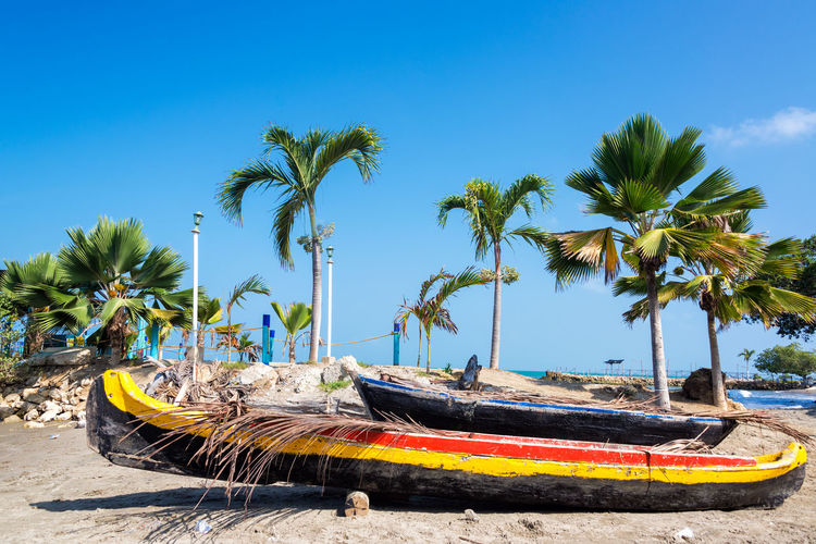 Canoes on a beach in Tolu, Colombia Beach Beautiful Boat Canoe Caribbean Coast Colombia Coveñas Day Landscape National Park Nature Outdoors Palm Palm Tree Sand Sea South Tolu Tourism Travel Tree Tree Tropical Water