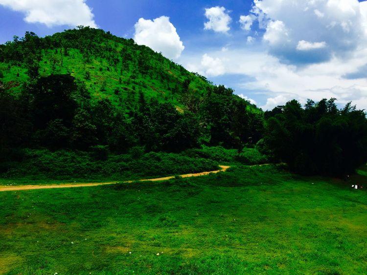 The beaten path... Check This Out Green Green Green!  Eye4photography  Summertime Kerala Relaxing Beautiful Nature Hillside Path
