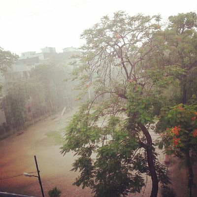 Sunday noon. Delhi rains ... Grounded for the weekend.