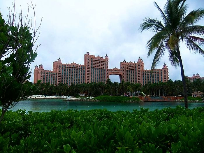Atlantis, Bahamas Amarkaiphotography Nature Architecture No People Building Exterior Tree Palm Tree Water Sky Outdoors Atlantis Bahamas Nassau Travel Travelphotography Photooftheday Followme Facebook Instagram Flickr Twitter EyeEm Tumblr