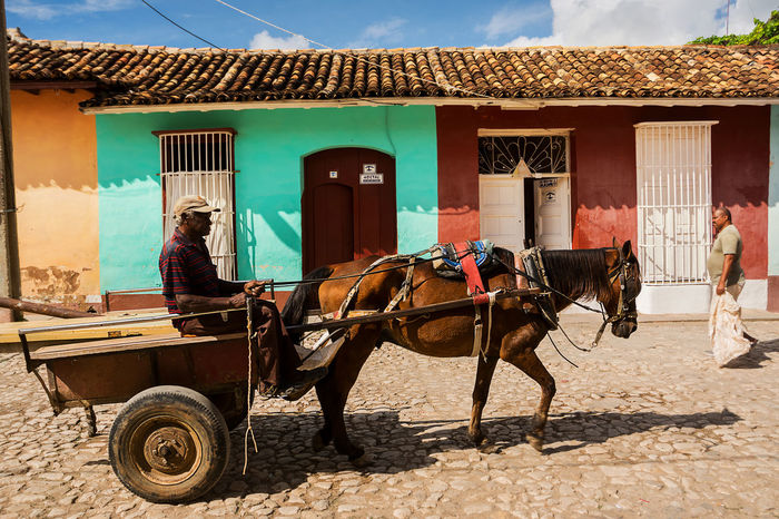 Trinidad, Cuba - 8 december: 2017: Horse drawn cart on a street in Trinidad Cuba Cuban Lifestyle Man Transportation Trinidad Cart Colonial Cuban Life Domestic Animals Horse Horse-drawn Mammal One Animal Outdoors Real People Street Town Trinidad, Cuba Working Animal