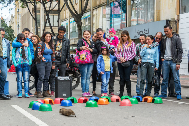 BOGOTA, COLOMBIA - APRIL 23: Crowd of people watches a guinea pig choose which colored bowl to run into in Bogota, Colombia on April 23, 2016 Architecture Bogotá Building Exterior Candelaria Casual Clothing City City Life Colombia Colors Cute Cuy Day Downtown Guinea Pig La Candelaria Neighborhood People Race Real People Rodent Rodents South America Standing Street Women