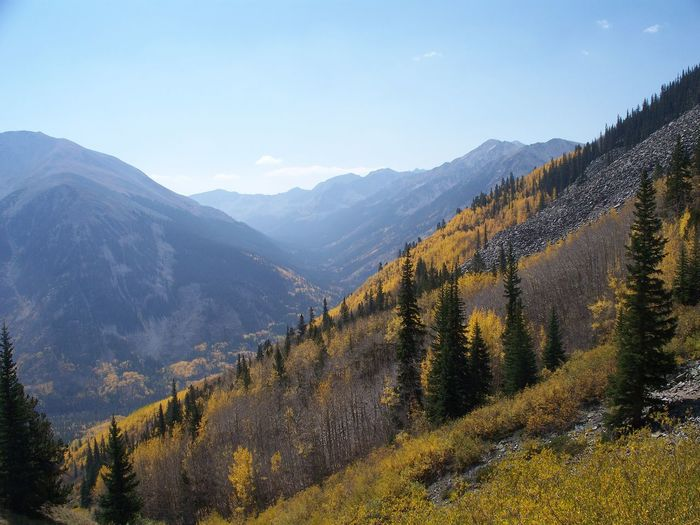 Aspen Autumn Autumn Leaves Beauty In Nature Day Fall Beauty Golden Landscape Majestic Mountain Mountain Range Nature No People Non-urban Scene Outdoors Physical Geography Remote Scenics Valley Diagonal Lines
