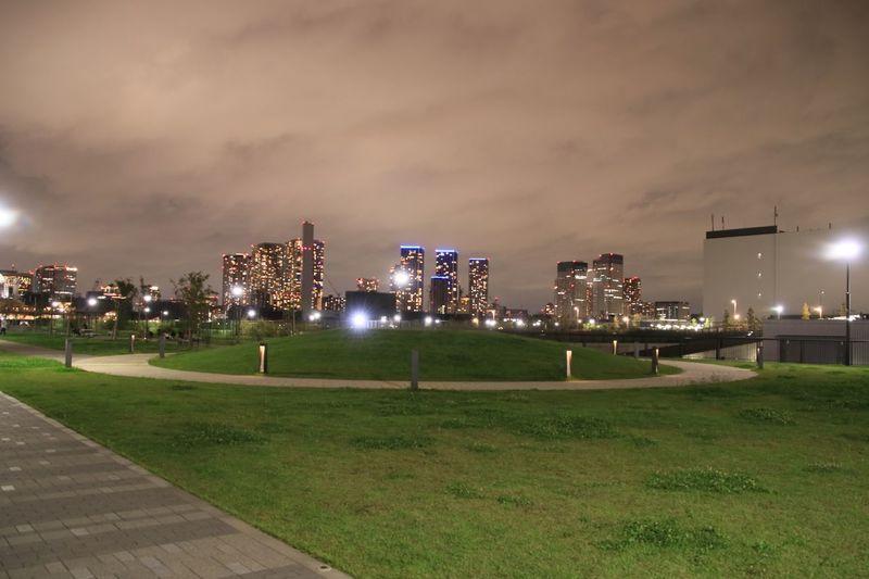 夜景 豊洲市場 豊洲ぐるり公園 Night Illuminated Grass Architecture Sky Building Exterior Built Structure City Cloud - Sky Park