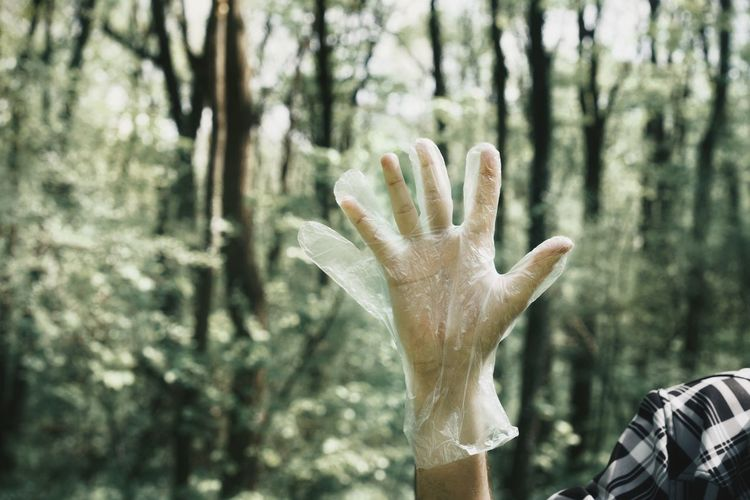 Cropped hand wearing plastic glove in forest