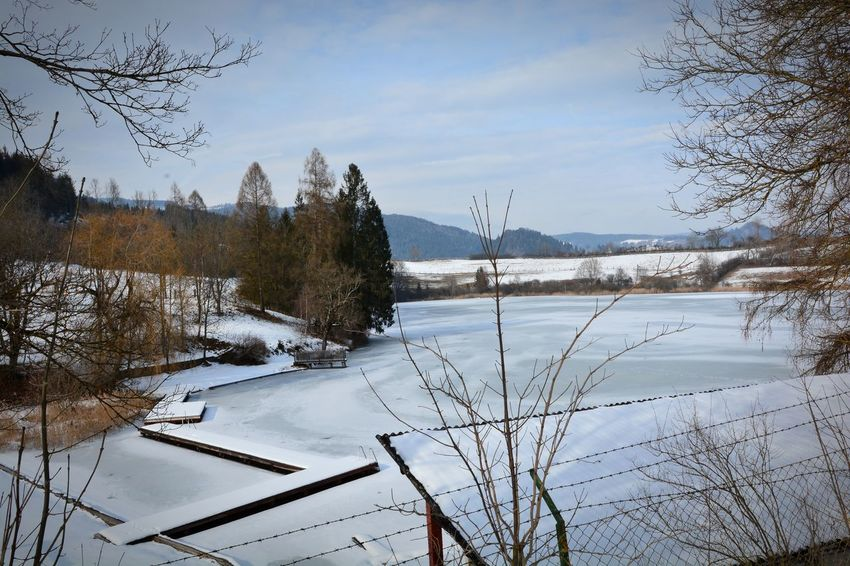 Kärnten Kraigersee Nature Photography Nature_collection Nikonphotography Nikon D7100 Lanscape Photography Landscape_photography Landscape #Nature #photography Snow Winter Cold Temperature Tree Nature No People Lake Water Frozen Day Beauty In Nature Outdoors Mobility In Mega Cities Colour Your Horizn EyeEmNewHere