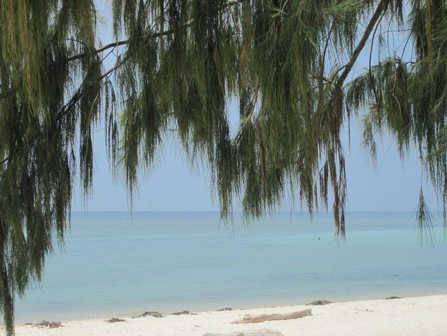 Thailand! Holidays ☀ Ocean View Sunset Silhouettes EyeEmBestPics EyeEm Best Shots Thailand Trip