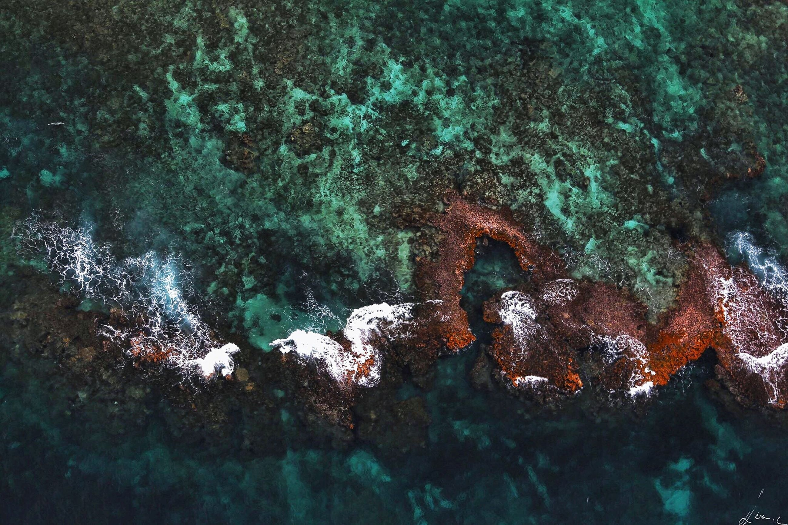 water, high angle view, underwater, nature, rock - object, animal themes, swimming, undersea, sea, fish, sea life, beauty in nature, animals in the wild, wildlife, outdoors, tranquility, day, no people, rock, one animal