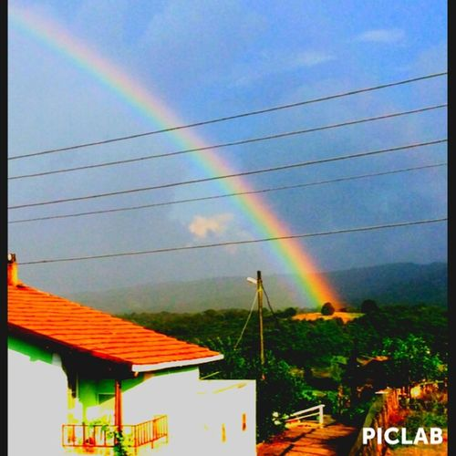 Rainbow Tree Art Sun ☀