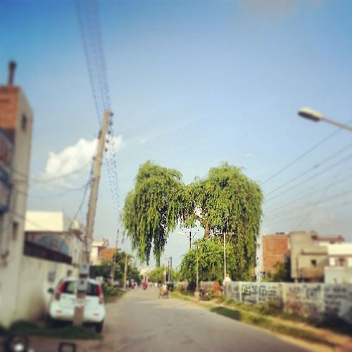 HDR Instagood Instadaily Instacool galaxynote2 instagrammers india Patiala weather instaweather